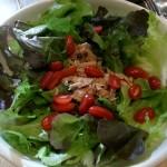 Yummy tuna salad